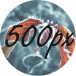 500-px-r